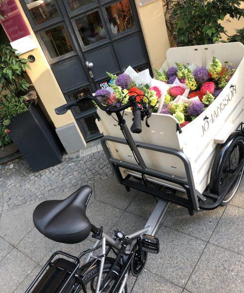 Magnolia Blumen Service Berlin